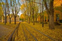 Φθινόπωρο στις οδούς του Μιλάνου, Ιταλία Στοκ Εικόνες