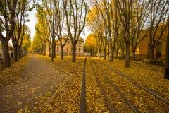 Φθινόπωρο στις οδούς του Μιλάνου, Ιταλία Στοκ Φωτογραφία