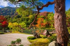 Φθινόπωρο στον κήπο zen σε Arashiyama, Ιαπωνία Στοκ φωτογραφίες με δικαίωμα ελεύθερης χρήσης
