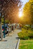 Φθινόπωρο στον περίπατο Lago Maggiore λιμνών Ιταλία, Arona Στοκ φωτογραφίες με δικαίωμα ελεύθερης χρήσης