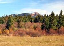 Φθινόπωρο στους λόφους Rohace, Σλοβακία στοκ εικόνες