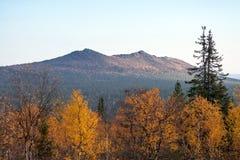 Φθινόπωρο στο δάσος Taiga με τα βουνά στον ορίζοντα Στοκ φωτογραφία με δικαίωμα ελεύθερης χρήσης