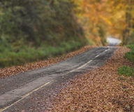 Φθινόπωρο στο βουνό Στοκ φωτογραφία με δικαίωμα ελεύθερης χρήσης