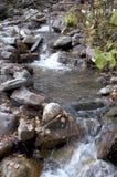 Φθινόπωρο στο δασικό ρεύμα βουνών Όμορφο δάσος φθινοπώρου, ρ Στοκ φωτογραφία με δικαίωμα ελεύθερης χρήσης