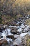 Φθινόπωρο στο δασικό ρεύμα βουνών Όμορφο δάσος φθινοπώρου, ρ Στοκ Φωτογραφία