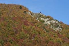 Φθινόπωρο στο εθνικό πάρκο Conguillio, Χιλή Στοκ Εικόνα