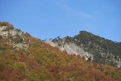 Φθινόπωρο στο εθνικό πάρκο Conguillio, Χιλή Στοκ εικόνα με δικαίωμα ελεύθερης χρήσης