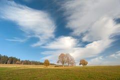 Φθινόπωρο στο μαύρο δάσος Στοκ εικόνα με δικαίωμα ελεύθερης χρήσης