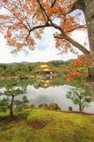Φθινόπωρο στο ναό Kinkakuji (χρυσό περίπτερο), βόρειο Κιότο, Ιαπωνία Στοκ Εικόνα