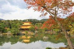 Φθινόπωρο στο ναό Kinkakuji (χρυσό περίπτερο), βόρειο Κιότο, Ιαπωνία Στοκ Εικόνες