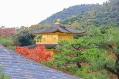 Φθινόπωρο στο ναό Kinkakuji (χρυσό περίπτερο), βόρειο Κιότο, Ιαπωνία Στοκ εικόνες με δικαίωμα ελεύθερης χρήσης