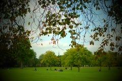 Φθινόπωρο στο πάρκο του αντιβασιλέα Στοκ Εικόνες