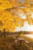 Φθινόπωρο στο πάρκο Στοκ φωτογραφία με δικαίωμα ελεύθερης χρήσης