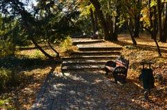 Φθινόπωρο στο πάρκο Στοκ Εικόνες