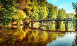 Φθινόπωρο στο υπαίθριο πάρκο με την ξύλινη γέφυρα στη λίμνη Στοκ Φωτογραφία
