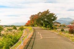 Φθινόπωρο της Ιαπωνίας, όμορφα φύλλα φθινοπώρου του πάρκου Obuse, δημόσιες σχέσεις του Ναγκάνο στοκ φωτογραφία με δικαίωμα ελεύθερης χρήσης
