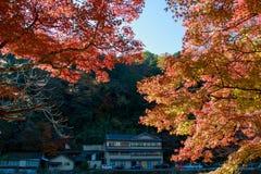 Φθινόπωρο της Ιαπωνίας Στοκ εικόνες με δικαίωμα ελεύθερης χρήσης