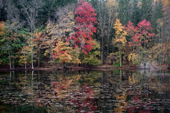 Φθινόπωρο της Νέας Αγγλίας Στοκ εικόνα με δικαίωμα ελεύθερης χρήσης