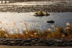 Φθινόπωρο του Κιότο Στοκ εικόνες με δικαίωμα ελεύθερης χρήσης