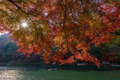 Φθινόπωρο του Κιότο Στοκ Φωτογραφίες
