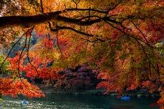 Φθινόπωρο του Κιότο Στοκ φωτογραφίες με δικαίωμα ελεύθερης χρήσης