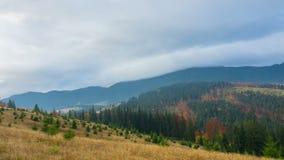 Φθινόπωρο το δάσος βουνών απόθεμα βίντεο