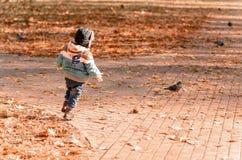 φθινόπωρο υπαίθρια Στοκ εικόνα με δικαίωμα ελεύθερης χρήσης