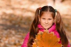 φθινόπωρο υπαίθρια Στοκ Φωτογραφίες