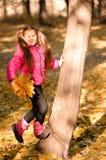 φθινόπωρο υπαίθρια Στοκ φωτογραφίες με δικαίωμα ελεύθερης χρήσης