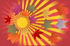 Φθινόπωρο υποβάθρου γειά σου Στοκ Φωτογραφίες