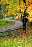 φθινόπωρο φυσικό στοκ εικόνα με δικαίωμα ελεύθερης χρήσης