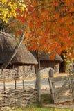 Φθινόπωρο, χωριό πτώσης Πάρκο στην Ουκρανία εικόνα ενός παλαιού σπιτιού με ένα άχυρο στη στέγη Γύρω από το σπίτι είναι ένας ψάθιν στοκ φωτογραφία