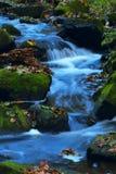 φθινόπωρο 12 Στοκ εικόνα με δικαίωμα ελεύθερης χρήσης
