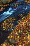 φθινόπωρο 3 Στοκ Φωτογραφία