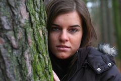 φθινόπωρο 6 Στοκ Φωτογραφίες