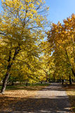 Φθινόπωρο Στοκ Φωτογραφίες