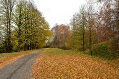 Φθινόπωρο Στοκ Φωτογραφία