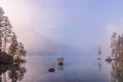 Φθινόπωρο andscape με την ομιχλώδη λίμνη Στοκ Φωτογραφία