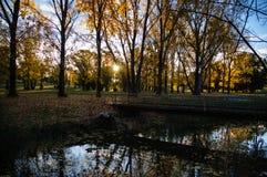 Φθινόπωρο Armidale Στοκ φωτογραφία με δικαίωμα ελεύθερης χρήσης