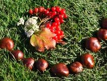 φθινόπωρο arnament Στοκ Φωτογραφίες