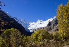 Φθινόπωρο Dombai, βουνά, φύση, χιόνι, ξύλο Στοκ εικόνες με δικαίωμα ελεύθερης χρήσης