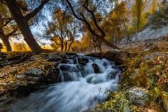 Φθινόπωρο Khaplu Στοκ Φωτογραφία