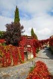 Φθινόπωρο Patones de Arriba, Comunidad de Μαδρίτη, Ισπανία Στοκ φωτογραφία με δικαίωμα ελεύθερης χρήσης