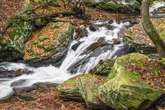 Φθινόπωρο Whitewater του Glen Leigh στοκ εικόνα με δικαίωμα ελεύθερης χρήσης