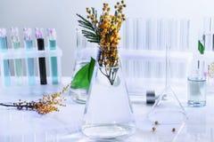Φιάλη γυαλιού με τα λουλούδια στον πίνακα στο εργαστήριο στοκ εικόνες