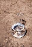 Φιάλη με το νερό στο ραγισμένο χώμα Στοκ Φωτογραφίες