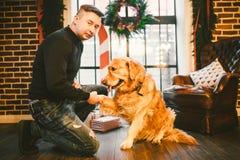 Φιλία του ατόμου και του σκυλιού Retriever της Pet χρυσό δασύτριχο σκυλί του Λαμπραντόρ φυλής Ένα άτομο εκπαιδεύει, διδάσκει ένα  στοκ εικόνες