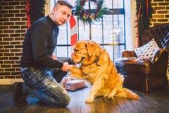 Φιλία του ατόμου και του σκυλιού Retriever της Pet χρυσό δασύτριχο σκυλί του Λαμπραντόρ φυλής Ένα άτομο εκπαιδεύει, διδάσκει ένα  στοκ φωτογραφία