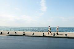 φιλική θάλασσα Στοκ Εικόνες