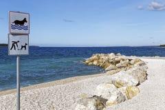 Φιλική παραλία σκυλιών Στοκ Φωτογραφία